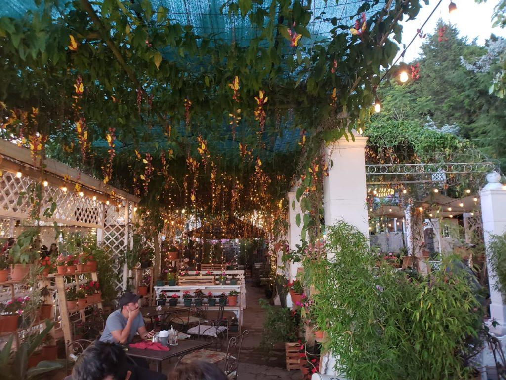 Linda Vista Garden
